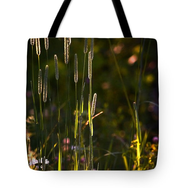 Early Morning Tote Bag by Loni Collins