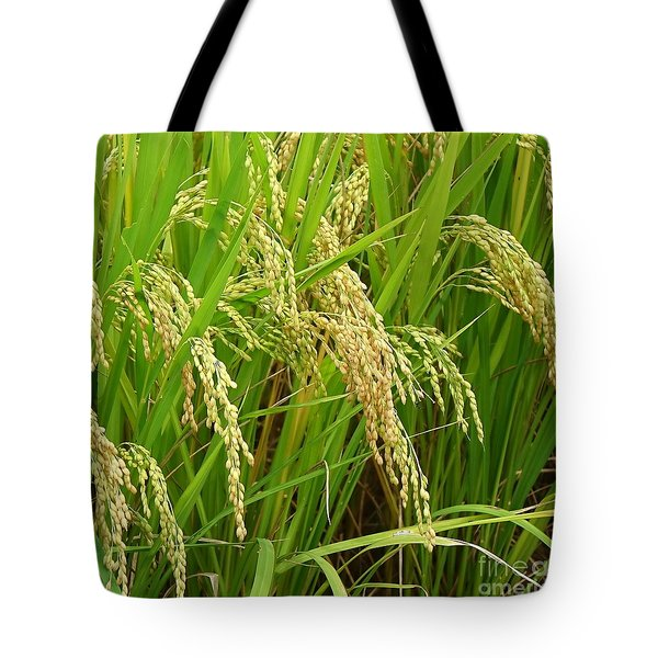 Ears Of Rice Tote Bag by Yali Shi