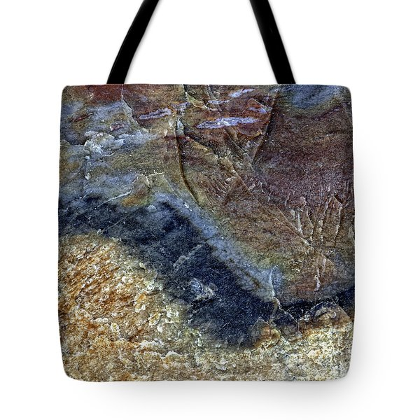 Earth Portrait 000-205 Tote Bag