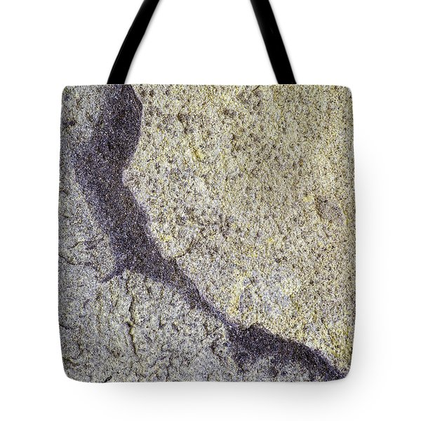 Earth Portrait 009 Tote Bag
