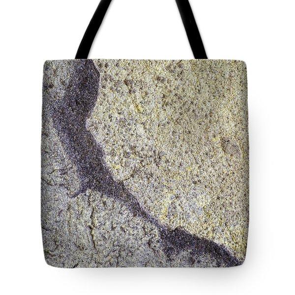 Earth Portrait 009 Tote Bag