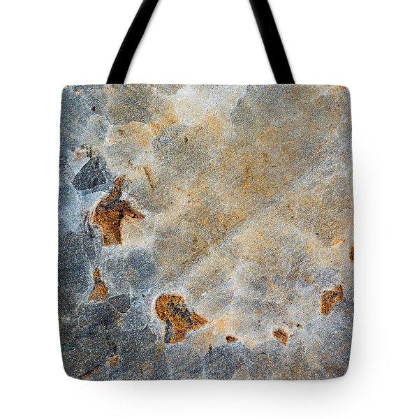 Earth Portrait 286 Tote Bag