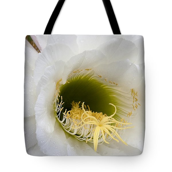 Tote Bag featuring the photograph Easter Lily Cactus by Phyllis Denton