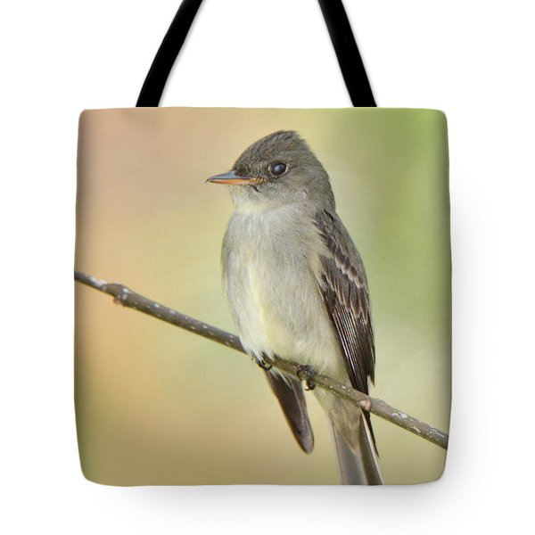 Eastern Wood-peewee Tote Bag