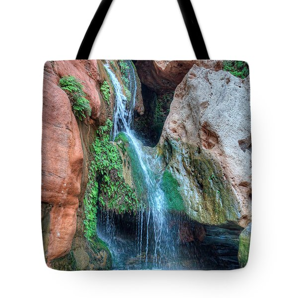 Elves Chasm Tote Bag by Britt Runyon