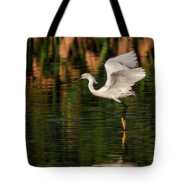 En Pointe Tote Bag by Cyndy Doty