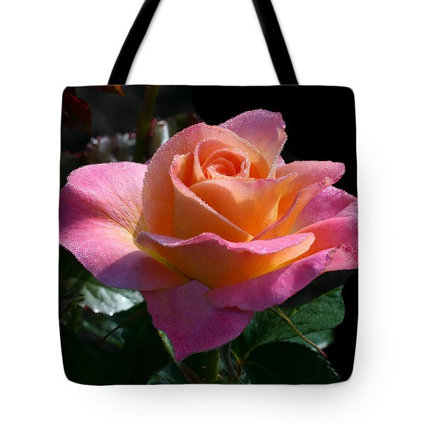 Enchantment Tote Bag by Doug Norkum
