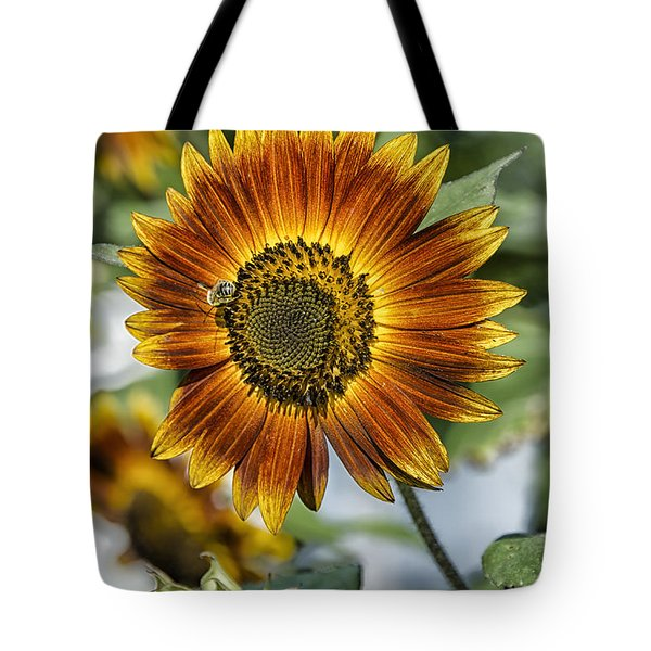 End Of Sunflower Season Tote Bag