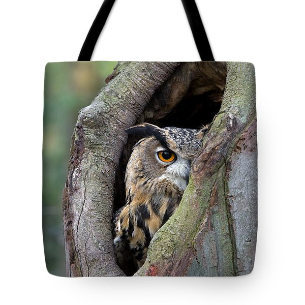 Tote Bag featuring the photograph Eurasian Eagle-owl Bubo Bubo Looking by Rob Reijnen