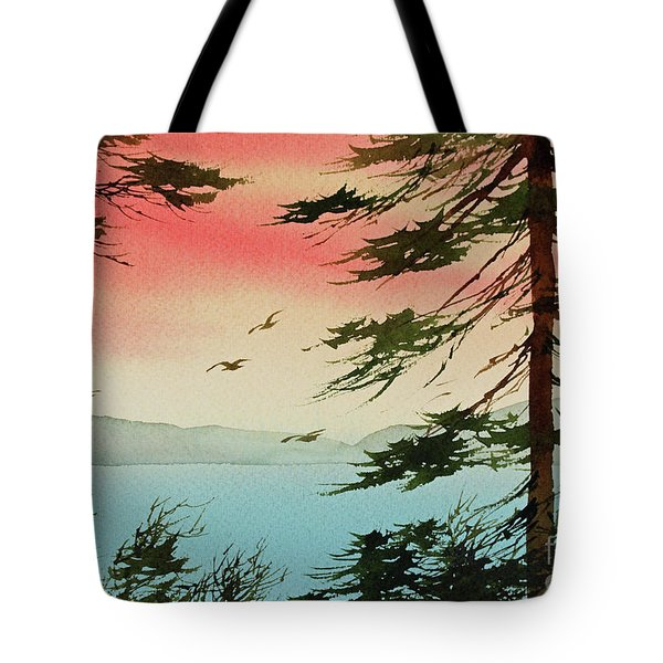 Tote Bag featuring the painting Evening Light by James Williamson