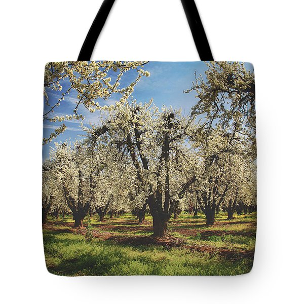 Everything Is New Again Tote Bag by Laurie Search
