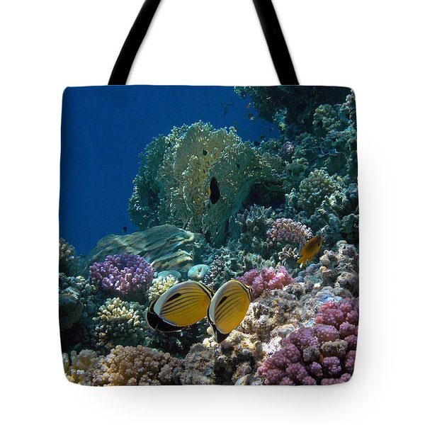 Exquisite Butterflyfish In The Red Sea Tote Bag
