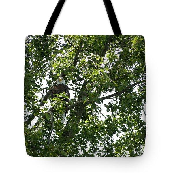 Face The Eagle Tote Bag