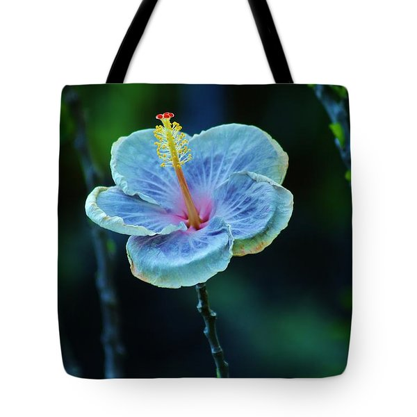 Fading Beauty Tote Bag by Craig Wood