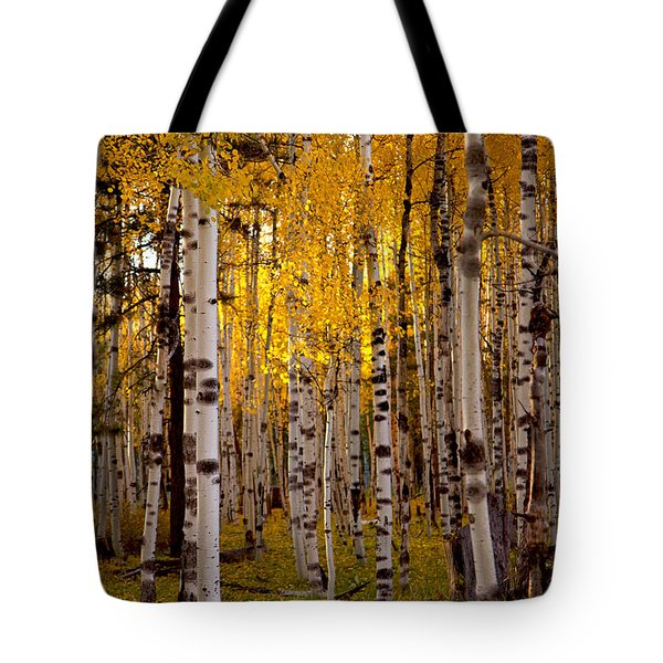 Fall At Snowbowl Tote Bag by Tom Kelly