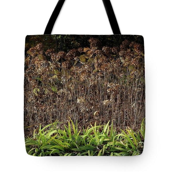 Tote Bag featuring the photograph Fall Contrasts by Deborah  Crew-Johnson