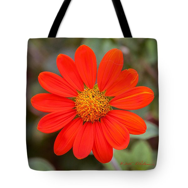 Tote Bag featuring the photograph Fall Flower by Edward Peterson