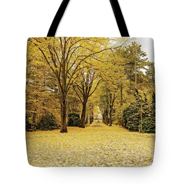 Tote Bag featuring the photograph Carpet Of Golden Leaves by Ivy Ho