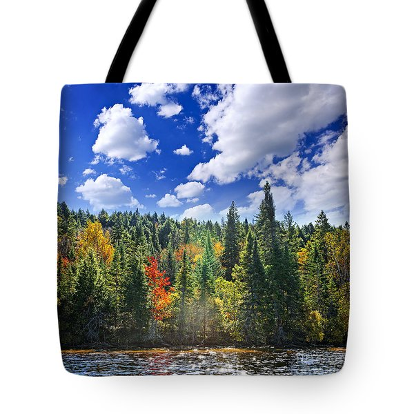 Fall Forest In Sunshine Tote Bag by Elena Elisseeva
