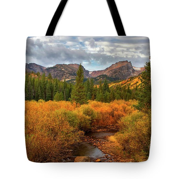 Fall In Rocky Mountain National Park Tote Bag by Ronda Kimbrow