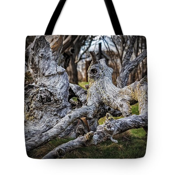Fallen From Grace Tote Bag by Mark Lucey
