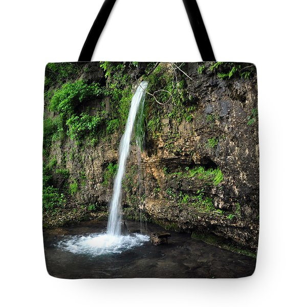 Falling Spring 3 Tote Bag by Marty Koch