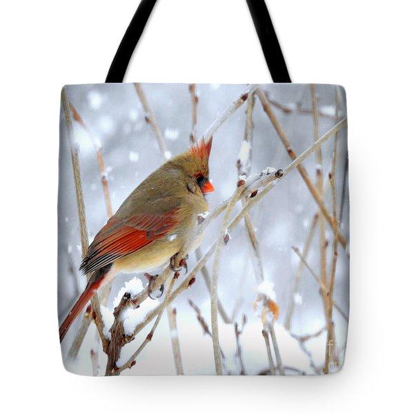 Female Cardinal Tote Bag by Brenda Bostic