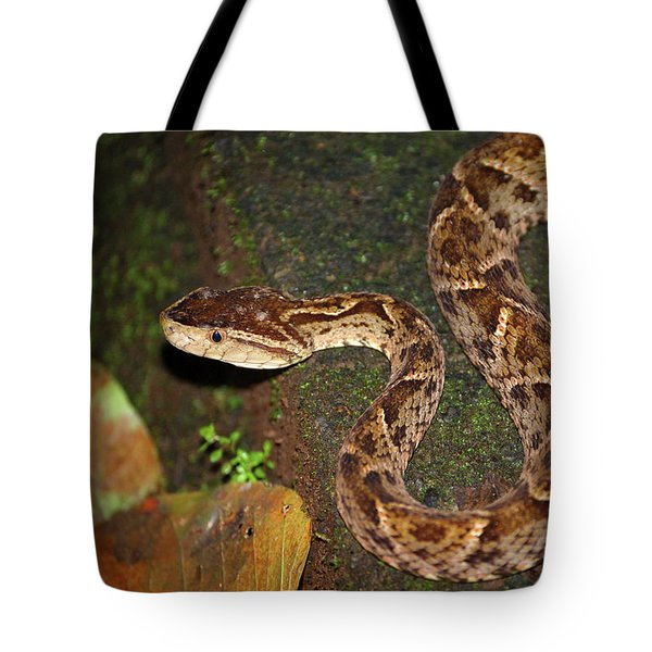 Tote Bag featuring the photograph Fer-de-lance, Bothrops Asper by Breck Bartholomew
