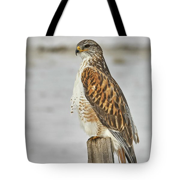 Ferruginous Hawk Tote Bag by Doug Herr
