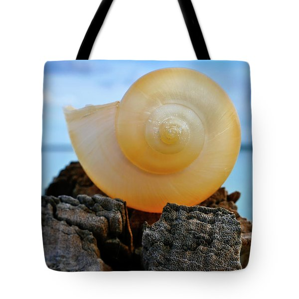 Tote Bag featuring the photograph Fibonacci by Skip Hunt