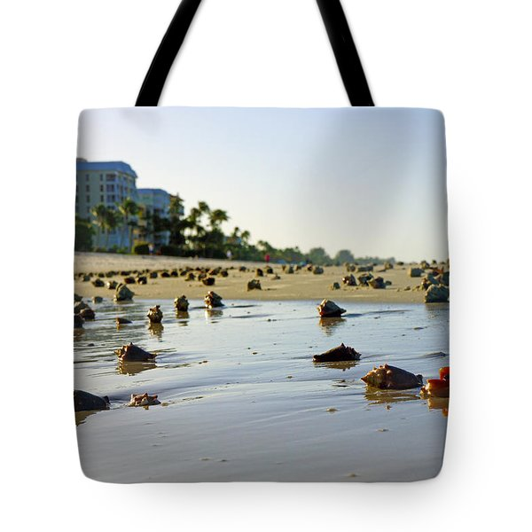 Fighting Conchs On The Beach In Naples, Fl Tote Bag by Robb Stan