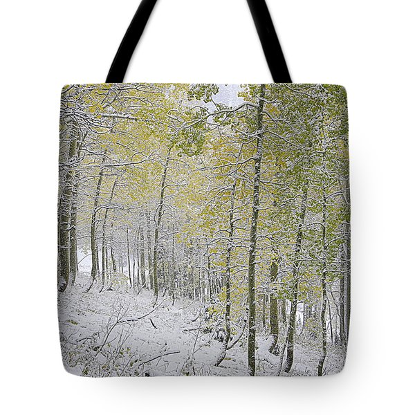 First Snow Fall Tote Bag