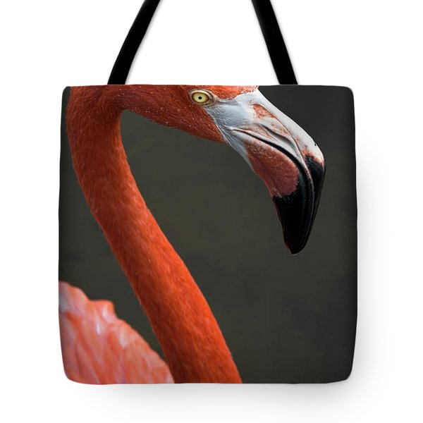 Flamingo Tote Bag by Christopher Holmes