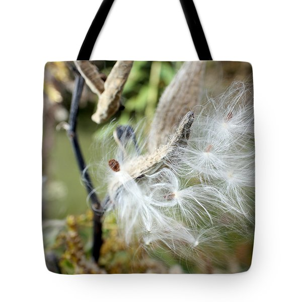 Flight Of The Milkweed Tote Bag by Lauren Radke