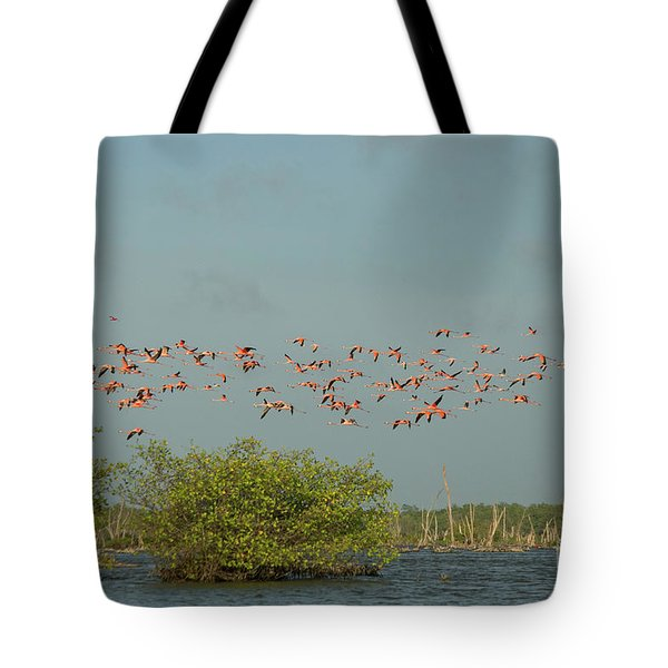 Flock Of Flamingoes Tote Bag