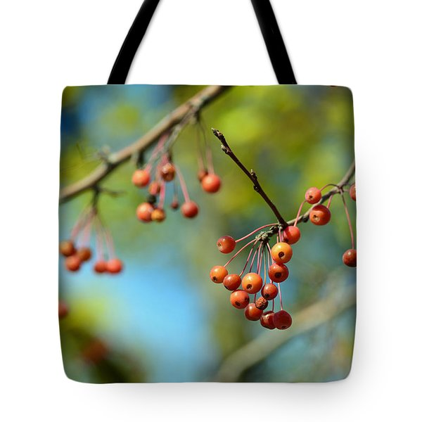 Flora No. 1 Tote Bag by Sandy Taylor