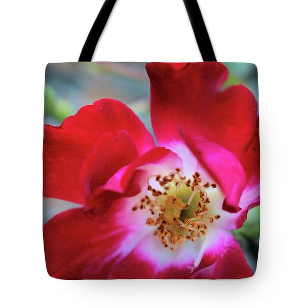 Flower Dance Tote Bag by Victor K