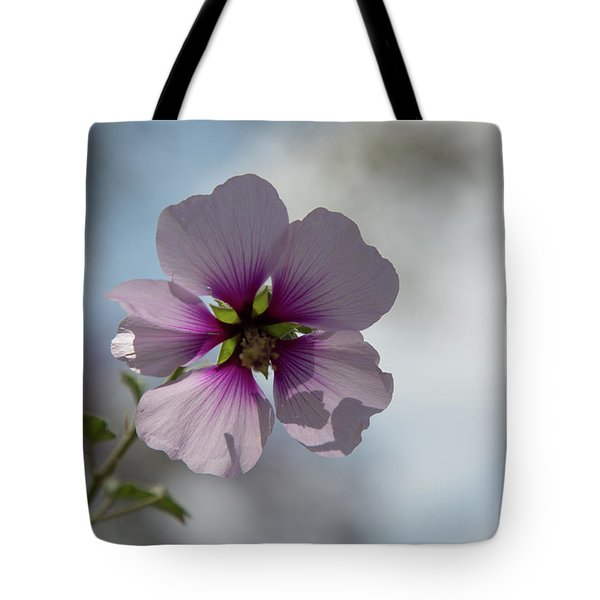 Tote Bag featuring the photograph Flower In Focus by T A Davies