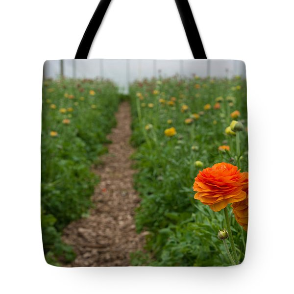 Tote Bag featuring the photograph Flowers In Greenhouse by Hans Engbers