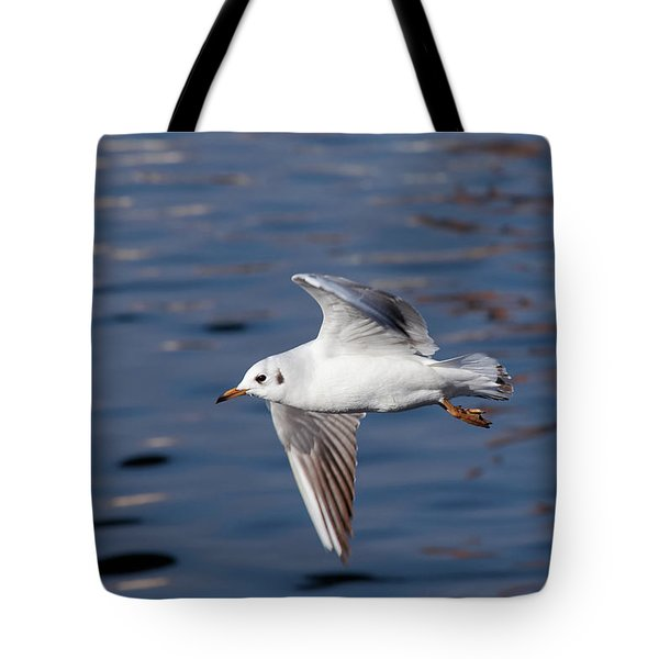 Flying Gull Above Water Tote Bag by Michal Boubin