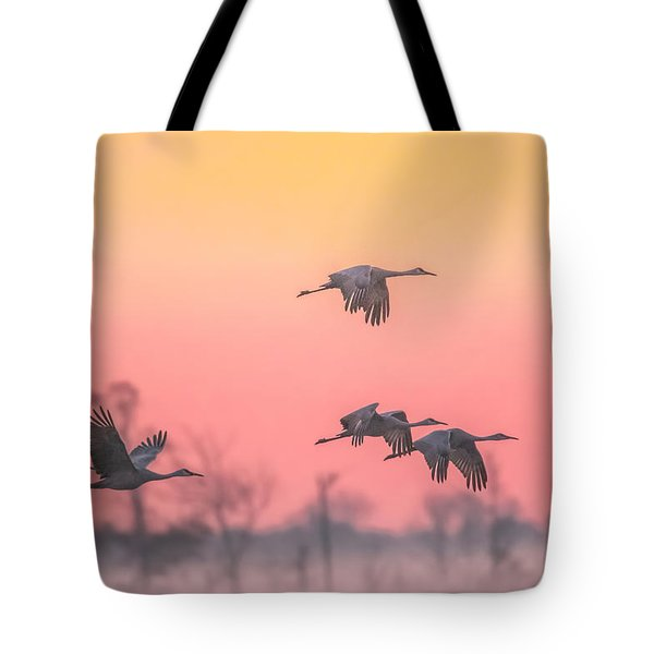 Flying Into The Light And Fog Tote Bag by Kelly Marquardt