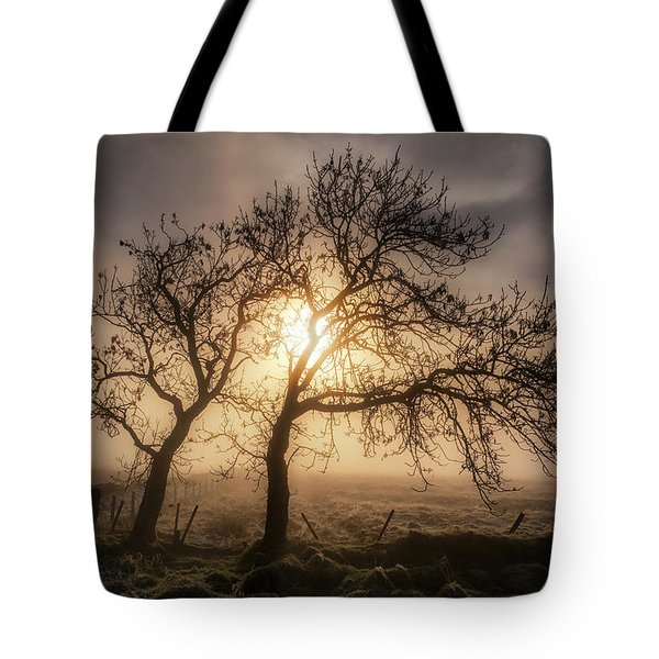 Tote Bag featuring the photograph Foggy Morning by Jeremy Lavender Photography