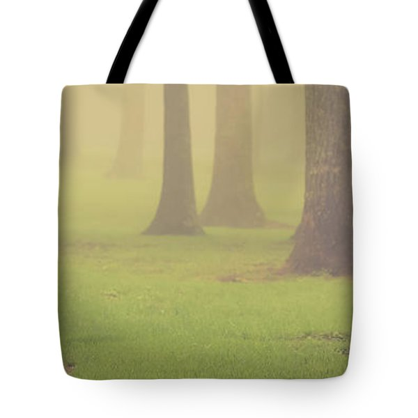 Tote Bag featuring the photograph Foggy Trees Pano by Joye Ardyn Durham