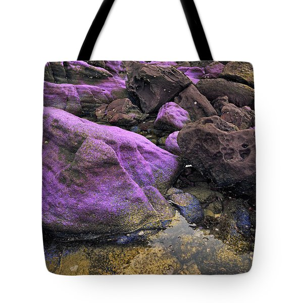 Foreign Shore Tote Bag