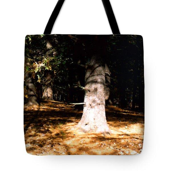 Forest Entrance Tote Bag by Paul Sachtleben