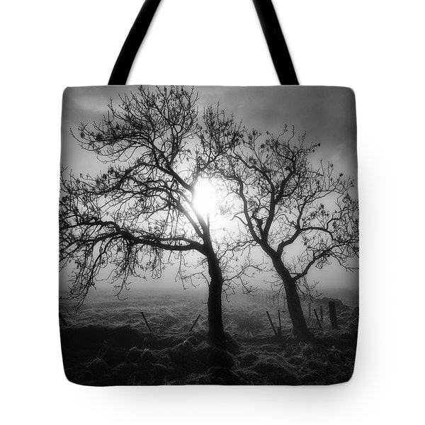 Tote Bag featuring the photograph Forever Buddies by Jeremy Lavender Photography