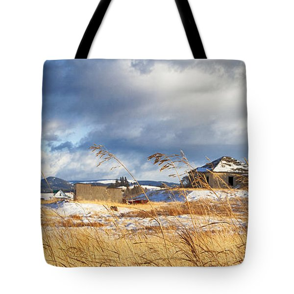 Forgotten Farmhouse Tote Bag by Theresa Tahara