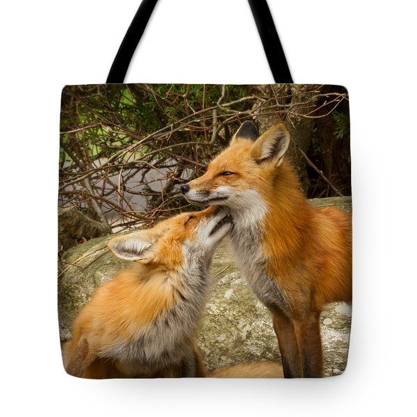 Foxes In Love Tote Bag