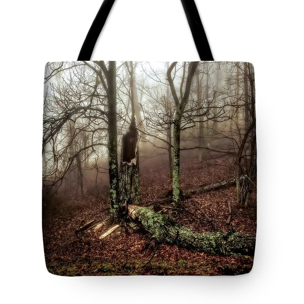 Fractured In Fog Tote Bag