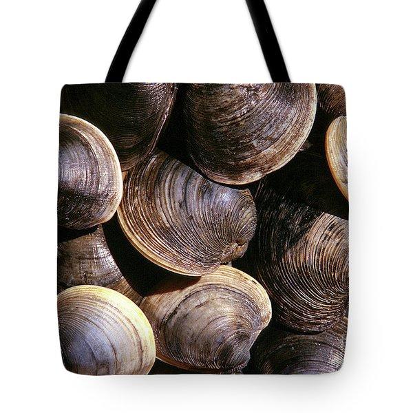 Fresh Clams Tote Bag by John Greim